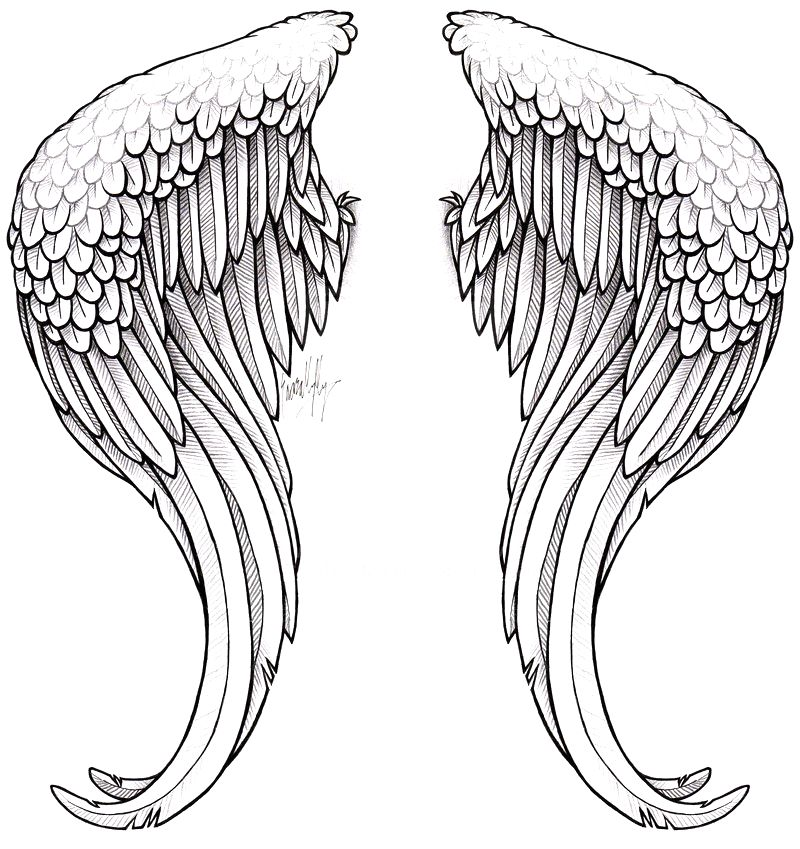 Wings_Tattoo_2_by_The_Blackwolf