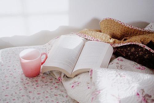 dicas-de-livro-instagram-diario-da-aninha-carvalho
