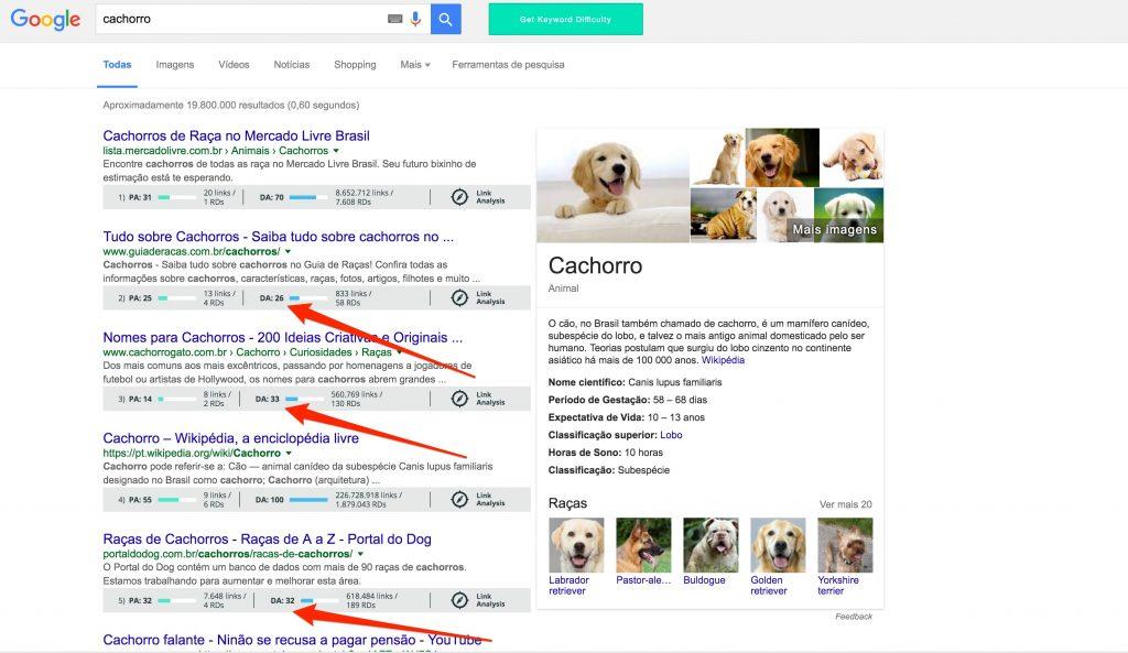cachorro_-_Pesquisa_Google