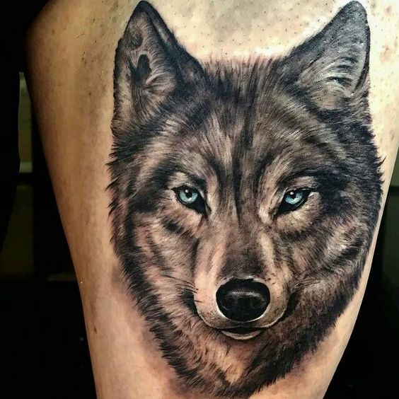 tatuagem-de-lobo