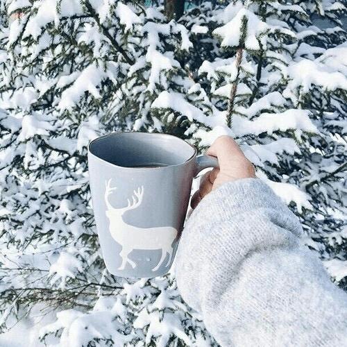 Fotos na neve com objetos e caneca