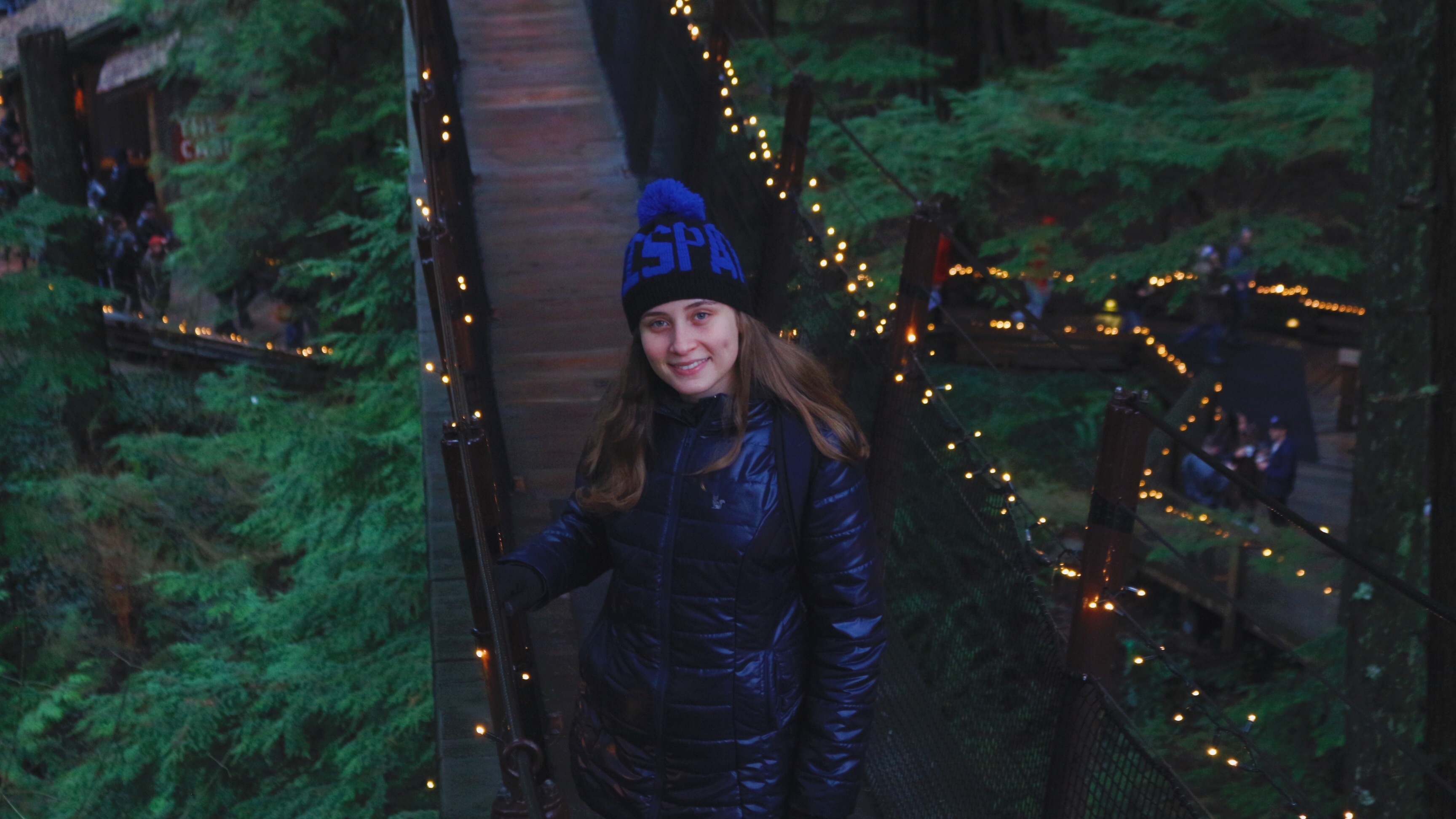 Capilano suspension bridge park