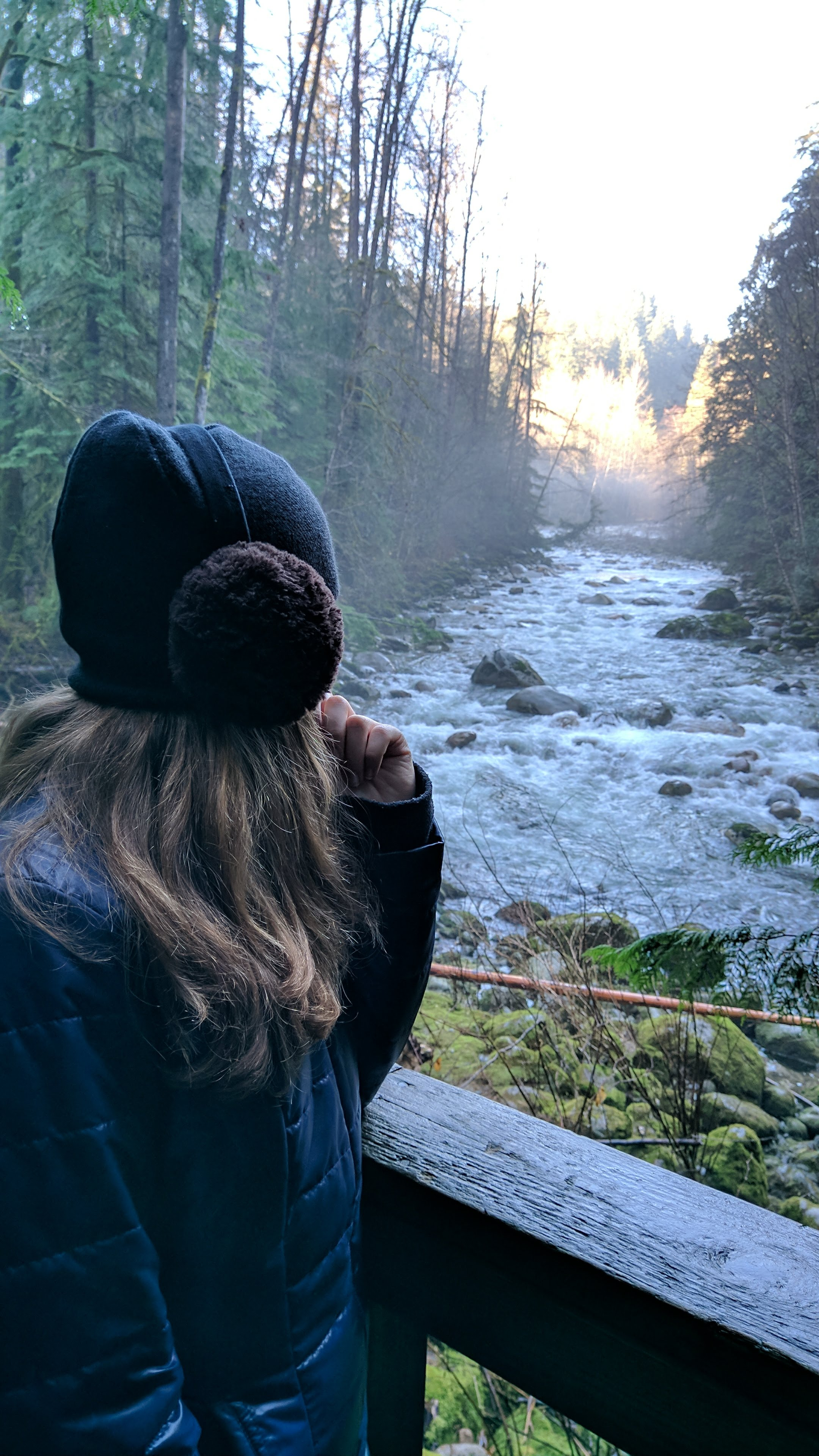 Lynn-canyon-vancouver